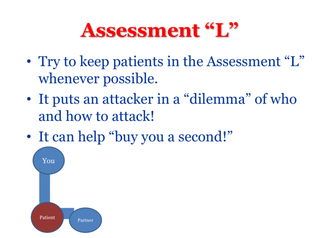 Assessment L from DT4EMS' EVE